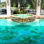 swimming-pool-mosaics-usa-LILY4[1]